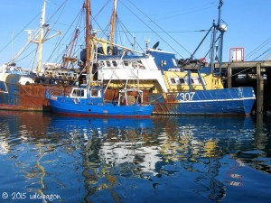 blue boats along the quay at Newlyn in Cornwall