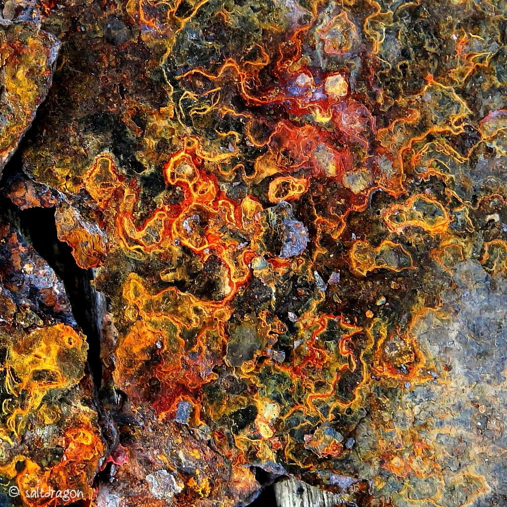 """Image called """"Embroidered rust"""""""