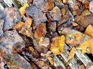 pile of corroded chippings